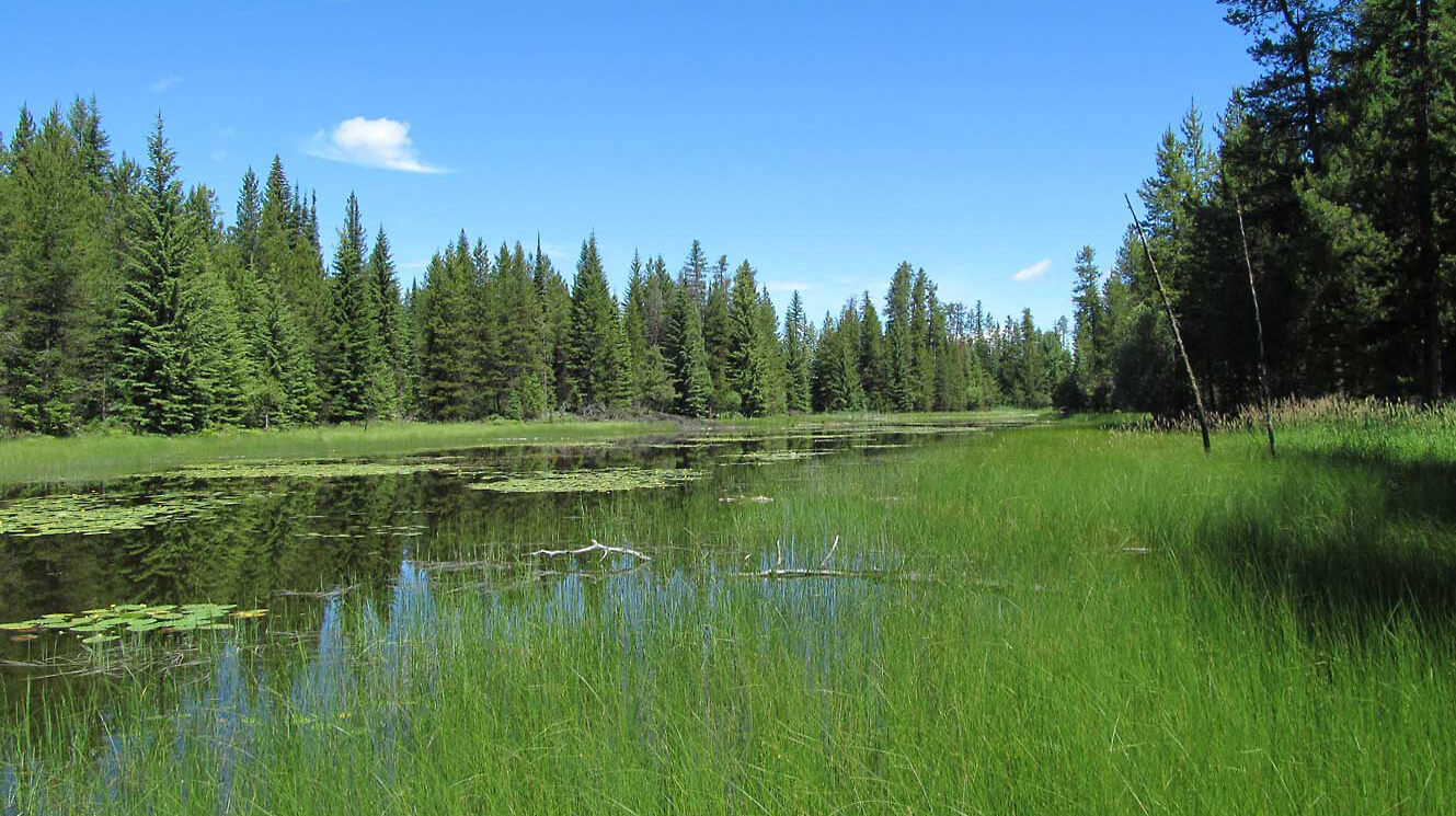 The Elk Flats Neighbors Project protects extensive riparian features.