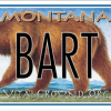 Monte Dolack Great Bear Montana license plate - Bart the Bear edition