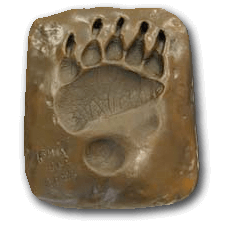 Bart the Bear Front Paw Bronze Cast