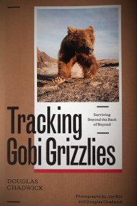Photo of Tracking Gobi Grizzlies book cover