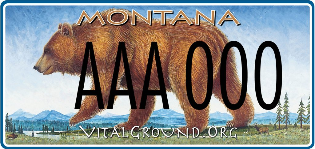 Vital Ground Montana license plate
