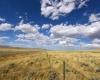 Big sky - fields of gold (wheat)