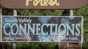 Swan Valley Bear Resources - video screenshot