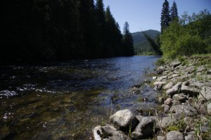 Yaak River (Berg CE) -- Kevin Rhoades