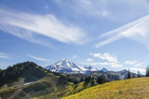 Photo of an alpine meadow and mountains in the North Cascades Ecosystem