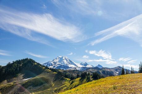 North Cascades meadow_iStock
