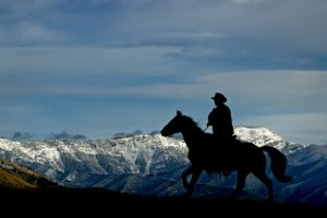 Photo of cowboy riding in front of the Bridger Mountains in Montana at dawn