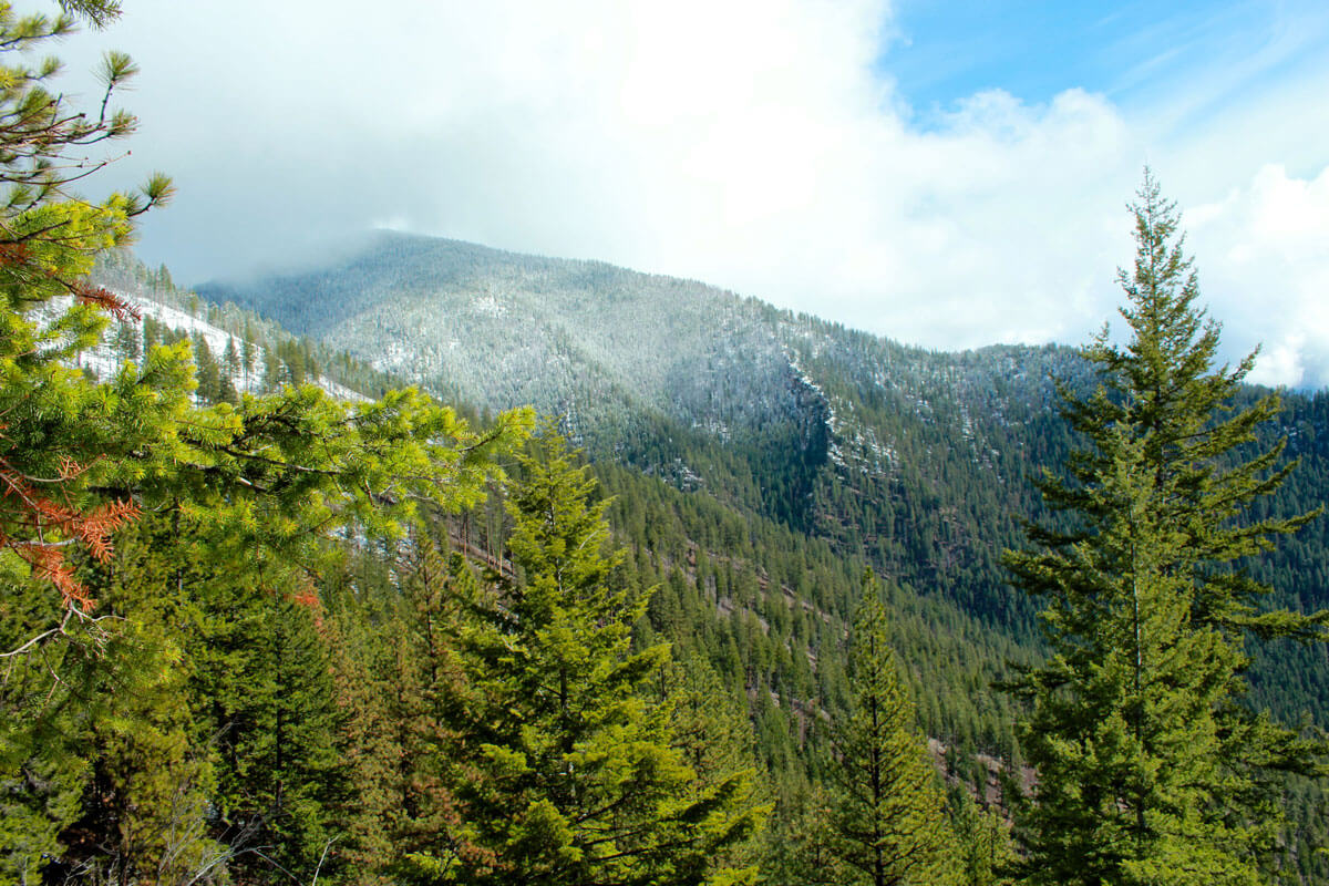 Photo of autumn snow dusting forested ridges in the Lolo National Forest's Cube Iron-Mt. Silcox Roadless Area