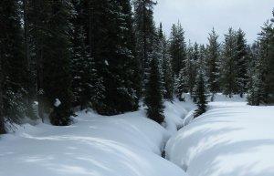 Lance Schelvan photo of deep snow near Lolo Pass in the Bitterroot Mountains