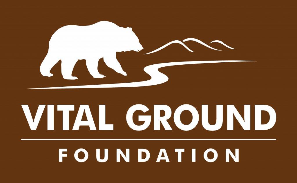 vital ground logo
