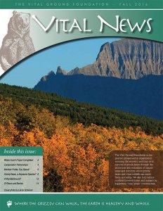 Vital News - Fall 2016 -