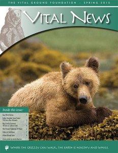 Vital News - Spring 2015 image of Newsletter (PDF)