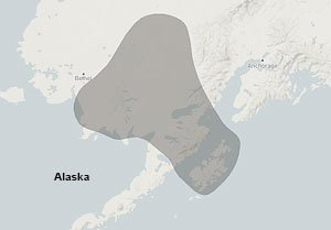 Map of Vital Ground project area in Alaska