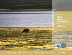 Cover shot of Biennial Report 2012-2013