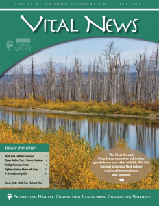Vital News cover - Fall 2017