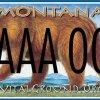 Monte Dolack license plate