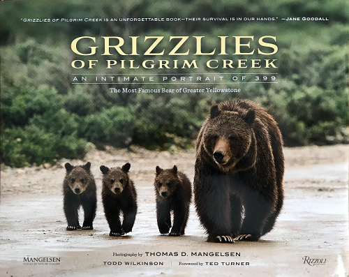 Photo of Grizzlies of Pilgrim Creek book cover