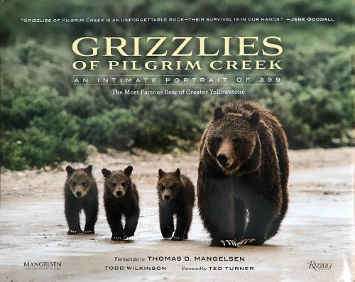 Photo of Grizzlies of Pilgrim Creek book cover