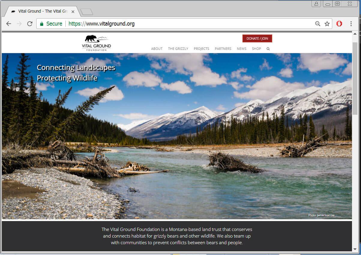 Vital Ground's new website