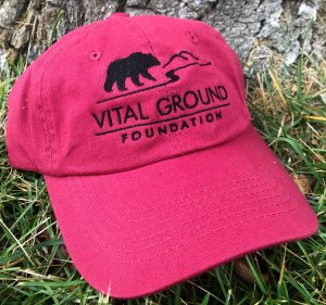 Grizzly bear Vital Ground baseball cap in hot pink