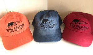 Grizzly Bear vital ground baseball caps in orange, blue, and red