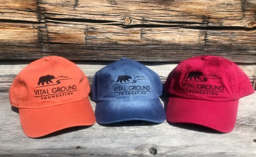 Vital Ground grizzly bear baseball caps in orange, blue, and red