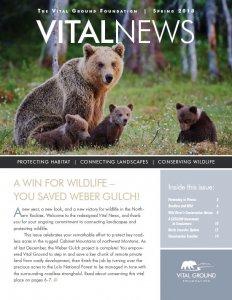 Vital News - Spring 2018