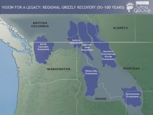 Vision for Regional Grizzly Recovery