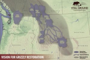 Vision for Grizzly Restoration Map