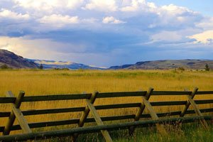 Wooden fence across yellow fields; Give land to Vital Ground