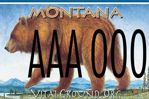 Grizzly bear Vital Ground license plate