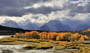 River with mountains on stormy fall day, Bart the Bear Memorial Campaign