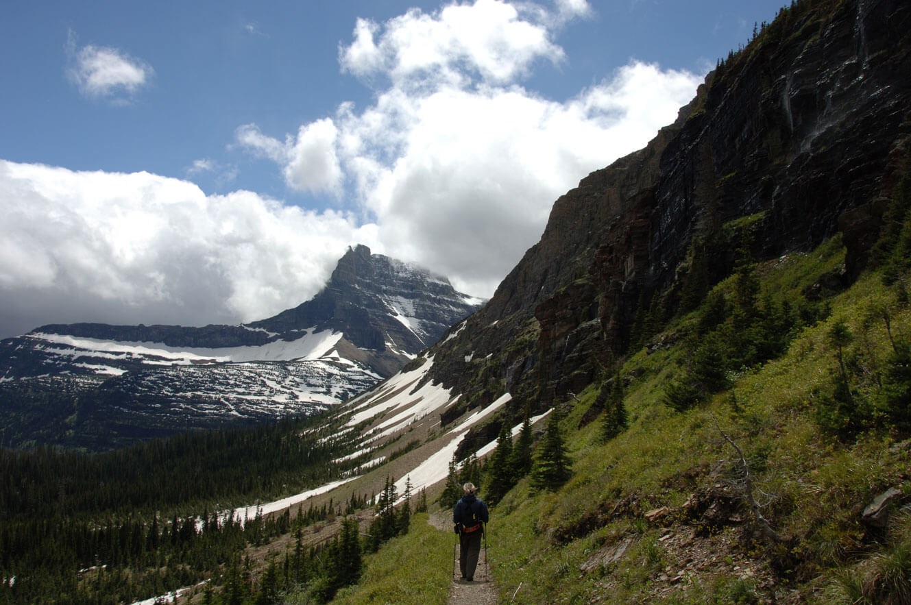 Glacier National Park mountain with field and forest, Lance Schelvan photo