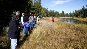 Vital Ground's Elk Flats Swan Valley Montana