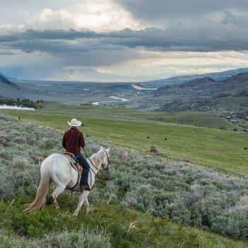 Range Rider in Montana valley