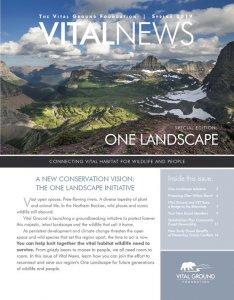 Vital News Spring 2019 Issue