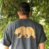 Grey men's Grizzly Bear t-shirt