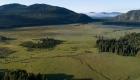 Bismark Meadows wetland
