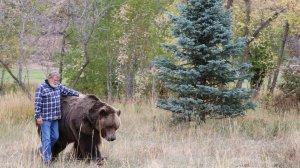 Doug Seus and Bart the Bear II