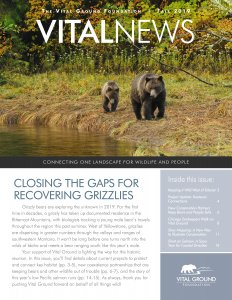 Vital News Fall 2019 issue cover