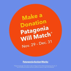 Patagonia Donation Matching button