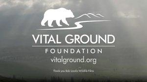 Vital Ground Foundation - video - conservation