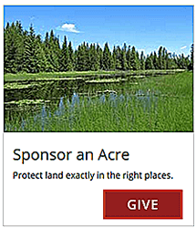 Sponsor an Acre
