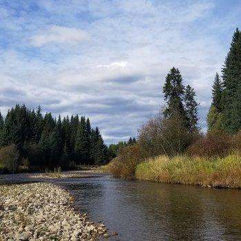 Yaak River in Broadie Habitat Preserve