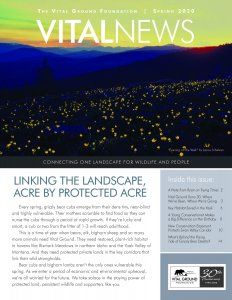 Cover of Vital News Spring 2020 issue