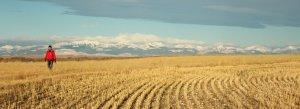 Glen Willow Ranch