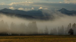 Field and foggy mountains