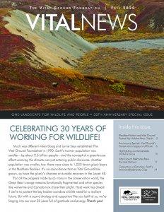 Vital News Fall 2020 cover