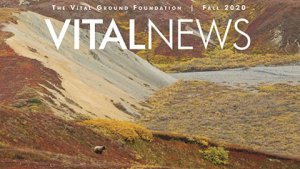 Vital Ground News image - newsletter cover