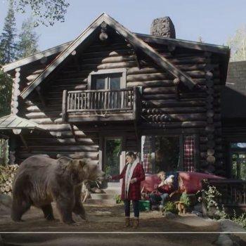 Bart the Bear in Kodiak Cakes ad
